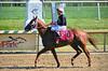 "2015-08-23 (92) r6 Roimes Chirinos on #8 Gator Boy (JLeeFleenor) Tags: photos photography md marylandhorseracing marylandracing jockey جُوكِي ""赛马骑师"" jinete ""競馬騎手"" dżokej jocheu คนขี่ม้าแข่ง jóquei žokej kilparatsastaja rennreiter fantino ""경마 기수"" жокей jokey người horses thoroughbreds equine equestrian cheval cavalo cavallo cavall caballo pferd paard perd hevonen hest hestur cal kon konj beygir capall ceffyl cuddy yarraman faras alogo soos kuda uma pfeerd koin حصان кон 马 häst άλογο סוס घोड़ा 馬 koń лошадь winner chestnut maryland"