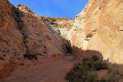 Entrance to Little Wild Horse Canyon (Bob Palin) Tags: 15fav usa southwest 1025fav 510fav canon landscape utah sandstone hiking 100v10f sanrafaelswell emerycounty littlewildhorsecanyon 100vistas instantfave canonef24105mmf4lisusm ashotadayorso orig:file=2015120703879
