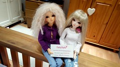 We love the tops thank you Maria xxx (Princess Stitch) Tags: bjd knitted fairystyle
