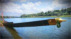 DSC_1541 (2) (|| Nellickal Palliyodam ||) Tags: india race boat snake kerala krishna aranmula avittam parthasarathy vallamkali parthan palliyodam malakkara nellickal jalothsavam edanadu