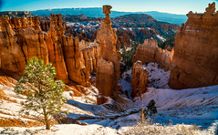 Sony A7R2 Fine Art Bryce Canyon Hoo Doos Covered in Snow! Dr. Elliot McGucken Winter Bryce Canyon Landscapes (45SURF Hero's Odyssey Mythology Landscapes & Godde) Tags: park autumn winter snow art landscape landscapes snowy dr sony fine canyon national hoodoo bryce zion snowing elliot brycecanyon a7 snowcovered wintry sonnar carlzeiss tfe landscapephotography mcgucken a7r 45surf fineartlandscape fineartlandscapes sonya7 elliotmcgucken sonya7r elliotmcguckenphotography drelliotmcgucken sonya7rii a7rii a7r2 sonyfe24240mmf3563osslens 55mmf18zalens sonya7r2 sonya7r2malibufineartlandscapessunsetssonya7riisony1635mmvariotessartfef4zaossemountlensdrelliotmcguckenfineartphotography brycecanyocoveredinsnow sonya7rfineart