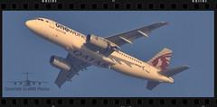 A7-AHL (EI-AMD Aviation Photography) Tags: qatar airways one world airbus a320 a7ahl eiamd photos aviation airport abu dhabi uae omaa auh