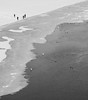 . (Katarina Kosanovic) Tags: winter beach danube frozen snow river swans people ice serbia