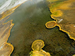 Upper Geyser Basin #9 (jimsawthat) Tags: rural wyoming thermalfeature uppergeyserbasin yellowstonenationalpark