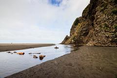 Karekare Beach (rvnix) Tags: nz newzealand auckland travel tourism coast nature wildwestcoast karekarebeach beach blacksand sand
