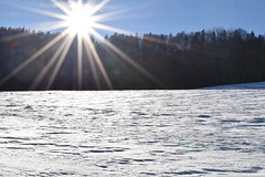 PHO_0157 (Dimi_M) Tags: neige soleil nature foret