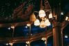 Immerso in una visione onirica (Davide Bon) Tags: teatro theatre rossetti trieste italy lamp concert flute orchestra vscofilm vsco nikon d7100 35mm 35mm18