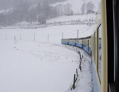 RD219.  On the MOB. (Ron Fisher) Tags: mob montreuxoberlandbernois switzerland suisse schmalspurbahn metregauge narrowgauge schweiz voieetroite transport publictransport snow rail railway ch winter train vehicle railroad