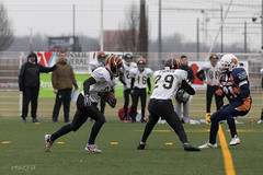 4D3A3015 (marcwalter1501) Tags: minotaure tigres strasbourg footballaméricain football sportdéquipe sport exterieur match nancy