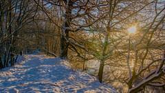 A walk on the lake - Ein Spaziergang am See (ralfkai41) Tags: schnee sunrise winter nature outdoor lake natur snow bäume sun eis sonnenaufgang hdr trees sonne see ice