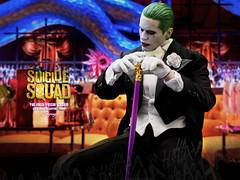 TUXEDO_Joker_007 (siuping1018) Tags: hottoys suicidesquad thejoker tuxedo photography dc actionfigures toy canon 5dmarkii 50mm