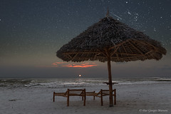 Sunrise in Zanzibar with starry sky (Pier PH) Tags: starrysky zanzibar tree tides nobody milkyway tropical red sunrise sand parasol horizon night light summer sun tanzania twilight abstract dark beach blue winter beauty sky scenic scene background silhouette wild nature starry palm vacation landscape scenicbeach beachchair lowtide sunrisebeach horizonsea skyscape romantic tranquil paradise comet shootingstar copyspace panorama