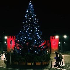 Natale (Massimo Tosi) Tags: holidays red lights albero italy christmas