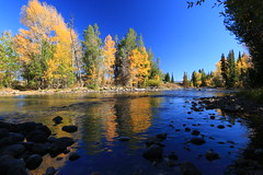 Sticks and stones (alideniese) Tags: grandtetonnationalpark wyoming usa northamerica landscape waterscape river reflection water trees autumn fall nature sunny outdoors cottonwoodcreek