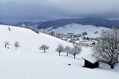 Wintertag in Grosshöchstetten (Martinus VI) Tags: grosshöchstetten möschberg winter winterlandschaft hiver schnee nieve snow neige kanton de canton bern berne berna berner bernese schweiz suisse svizzera suiza switzerland y150222 martinus6 martinusvi