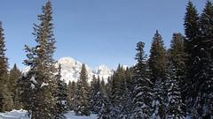 Paneveggio Forest (ab.130722jvkz) Tags: italy trentino alps easternalps dolomites palagroup mountains winter snowfall reservesandnationalparks