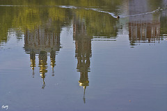 Reflejos... (svet.llum) Tags: reflejos iglesia monasterio arquitectura paisaje otoño moscú rusia pato animal estanque