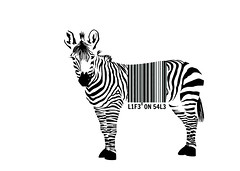 human impact (brescia, italy) (bloodybee) Tags: 365project zebra animal bar code barcode sell stripes horse bw white black graphic design environment ecology wildlife