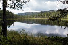 Dans le miroir .... (sosivov) Tags: summer mountain lake reflection forest landscape nationalpark sweden worldheritage högakusten skuleskogen highcoast
