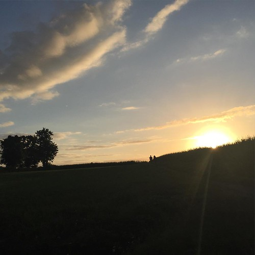 C&T Sunsets