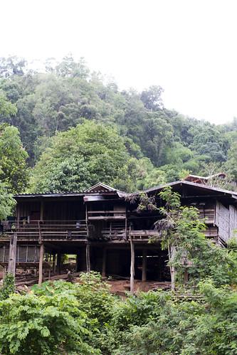 Jungle Tour In Chiang Mai