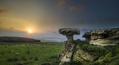 The Bunnet Stane (ben.leng) Tags: trees sunset sky cloud green grass rock evening sandstone glow sheep fife lomond stane bunnet lomondhills thebunnetstane