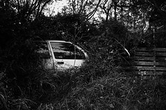 MIM : Forgotten car | Voiture oublie (galibert olivier) Tags: street travel portrait france men pond frankreich path south pad streetphotography menschen silence memory estanque voyager frankrijk  teich  francia herald chemin speicher hommes sud reise herold discover vijver dcouvrir tang camargue pfad mensen reizen  stille hrault mmoire heraldo sden stilte    geheugen   ontdekken zuiden entdecken  heraut