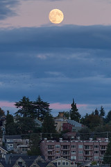 Gasworks moonrise (mfeingol) Tags: seattle sunset moon evening moonrise gasworks seattleflickrmeetup stroll1509