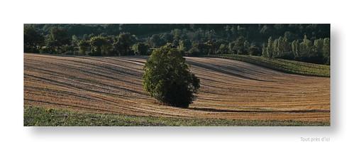 "Le dormeur du val • <a style=""font-size:0.8em;"" href=""http://www.flickr.com/photos/88042144@N05/21257919001/"" target=""_blank"">View on Flickr</a>"