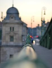 vrosrszlet (ffruzsi.) Tags: city morning bridge urban liberty photography early town bokeh budapest minimal