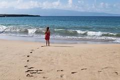 Great Big World (gpa.1001) Tags: hawaii nikon maui d300 dtflemingbeach cmwdred