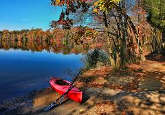 Parvin State Park, New Jersey, Pine Barrens (biglannie) Tags: park autumn lake fall pine landscape state scenic nj canoe barrens parvin