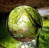 Fisheye Photography