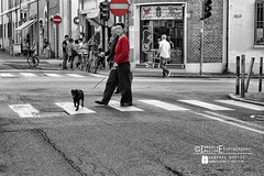 Cross redimmaginEmozioni Photography (immaginEmozioni Photography) Tags: road street city travel light red people urban woman dog white signs black rot sign canon golf walking rouge calle cityscape crossing cross traffic streetphotography pedestrian professional signals jersey gata utca rua jalan rd rue rood  appearance  straat  immagine sokak emozioni signposts   ulice punainen  gade dearg   erven katu  rooi  aussehen ulica strase rauur      apparence   gtu  immaginemozioni