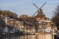 Schiedam, Lange Haven met molen de Walvisch (Jan Sluijter) Tags: holland netherlands windmill moulin canal molino molen walvis gracht schiedam marjolijn muehle schie visitholland langehaven