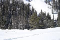 SnowMo IV 2013 011