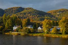 Gateway To The Highlands (stephenb19) Tags: uk autumn trees orange black yellow river gold scotland hall highlands october britain perthshire scottish sunny rapids foliage hillside dunkeld linn ossian 2015 ossians