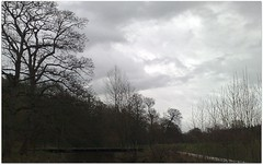 (Riik@mctr) Tags: wood winter sky plant tree river nokia phone cheshire outdoor pk carrs styal wilmslow bollin n95