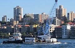 IMG_5331 Small Sydney Tug Arana. (Boat bloke) Tags: canon coast boat ship waterfront yacht sydney australia tugboat tug sydneyharbour sx50hs