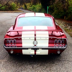 "1968 Mustang • <a style=""font-size:0.8em;"" href=""http://www.flickr.com/photos/85572005@N00/23628789706/"" target=""_blank"">View on Flickr</a>"