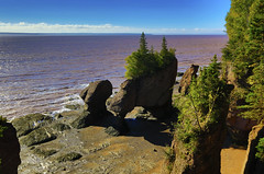 Hopewell Rocks : Low tide . . . (Clement Tang **bbbusy**) Tags: travel canada concordians closetonature autumn morning eastcanada landscape grandemaregroup scenicsnotjustlandscapes waterscape lowtide bluesky whiteclouds hdr muddywater nationalgeographic rockformation rockerosion extremetides eastcoastofcanada nature unescosite bayoffundy moncton newbrunswick flowerpotsrocks