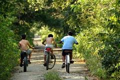 Young boys bicycling on the Camino Carrillo Puerto - Sian Ka'an, which also happens to be a great birding road [Felipe Carrillo Puerto / Yucatan / Mexico] (babakotoeu) Tags: mexico yucatan travel central america felipe carrillo puerto camino sian kaan