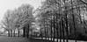 IJweg, Hoofddorp (winter) (Hans Westerink) Tags: hoofddorp noordholland nederland nl ijweg panorama canon 6d hanswesterink netherlands bomen trees winter rijp landschap landscape stitched black white monochrome fietspad bikelane kou vrieskou celsius huisje haarlemmermeer water