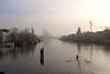Amstel (jpmm) Tags: 2017 amsterdam boten woonboten houseboats roeier skif dukdalf mist vogels fog birds