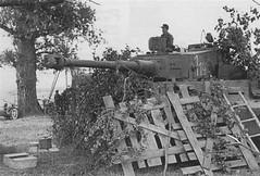 Tiger 114 of SpzAbt 507.