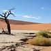 DSC02865 - Namibia 2010 Sossusvlei