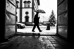 (formwandlah) Tags: kaiserslautern sunny day winter street photography streetphotography silhouette silhouettes silhouetten shadow schatten dark noir urban candid city strange gloomy cold sureal bizarr skurril abstract abstrakt melancholic melancholisch darkness light bw blackwhite black white sw monochrom high contrast ricoh gr pentax formwandlah thorsten prinz licht shadows fear paranoia einfarbig schwarzer hintergrund nacht fotorahmen spiegelung reflection reflektion schärfentiefe bürgersteig landstrase personen snow schnee schirm regenschirm umbrella christmas tree frame framed rahmen schneefall snowfall blizzard snowstorm schneesturm
