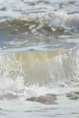 DSC_0114 (sarahk5446) Tags: gulfofmexico gulfcoast water waves wildlife gulfshores ocean orangebeach outside nautical nikon natural nature sand summer spring sea sky swim surf sun seashore alabama adventure america floridastateparks florida