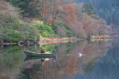 Splash, the one that got away (PeterYoung1.) Tags: atmospheric boat loch lochard beautiful fishing nature reflections scenic scotland trees uk water peteryoung1