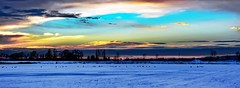 March of the Canada Goose (Images by Christie ♪♫ Happy Clicks for 2017 !) Tags: canadageese canadagoose bc canada sunset winter snow cold sky blues bird goose geese